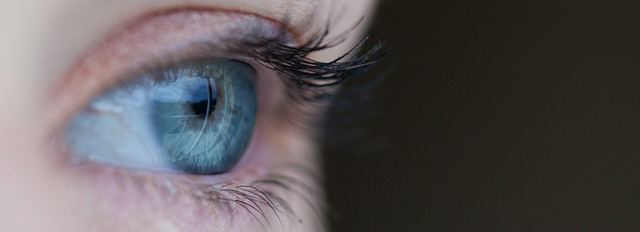 Atelier de sémiotique : Sémiotique visuelle et oculométrie