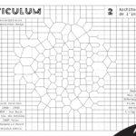 Reticulum 2